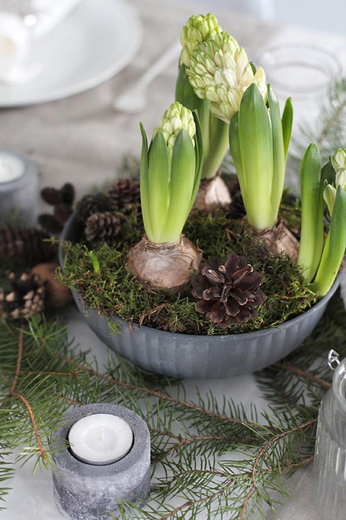 Hyacint Jako Vnon Dekorace DesignVille