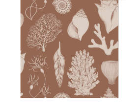 Tapeta Katie Scott Shells, toffee